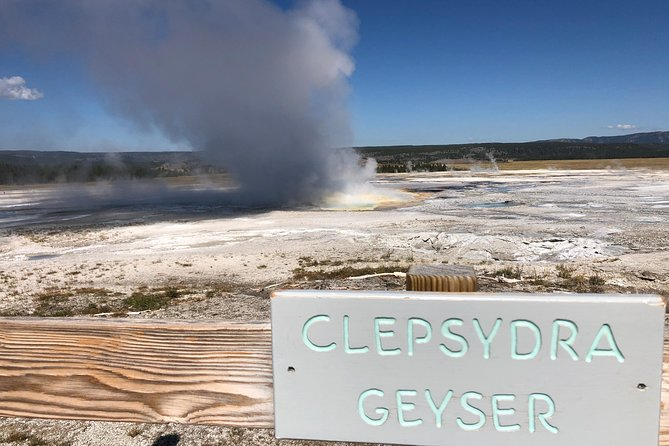 PRIVATE TOUR: The Best of Yellowstone National Park. Picnic lunch included! photo 11