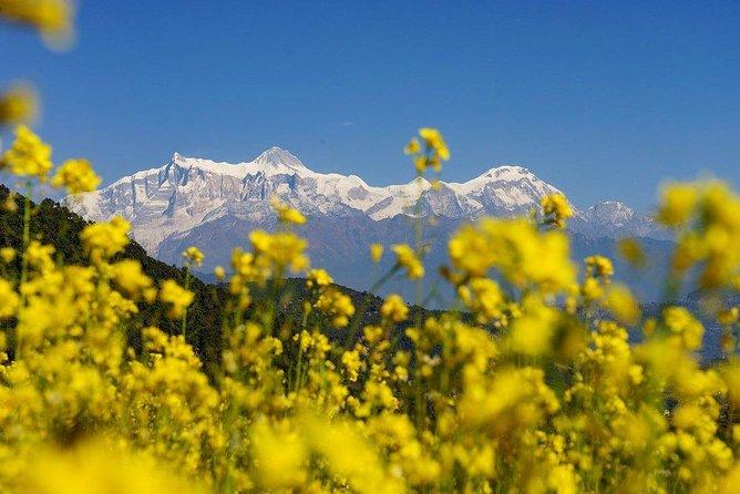 4 Days Trek From Panchase To Bhandure And Sarangkot From Pokhara