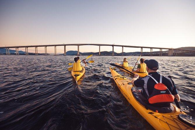 Hobart Kayak Tour