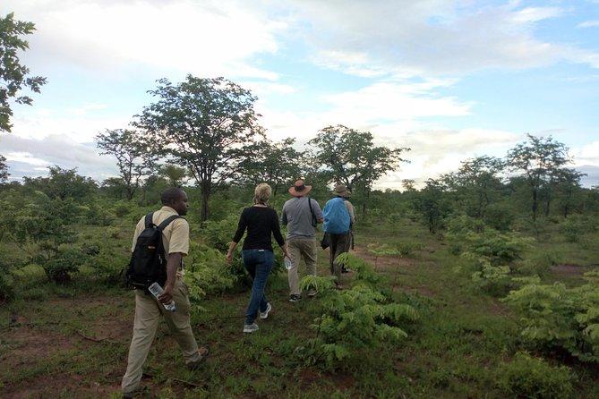 Rhino & Nature walk in the Musiotunya National Park