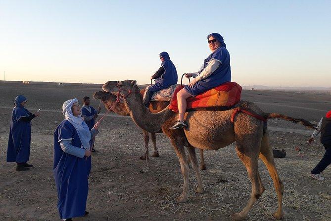 Safari Camel & lunch In Agafay Desert