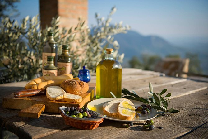 Olive Oil & Wine in the Euganean Hills