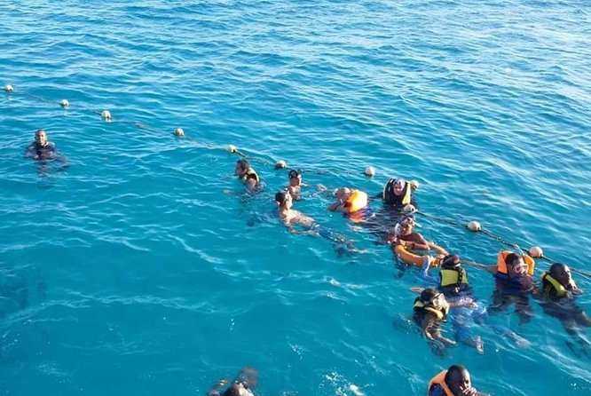 Sea Wolf Semi Submarine 3 HOURS With Snorkeling photo 50