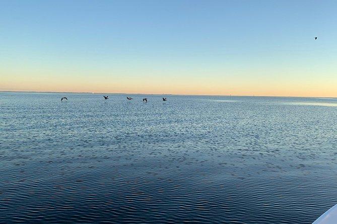 Half Day of Boating & Island Hopping