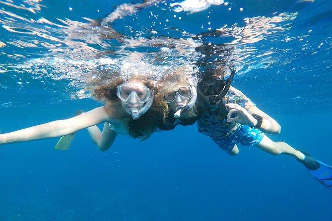Eco-friendly private snokeling at a pristine coral reef in Aruba