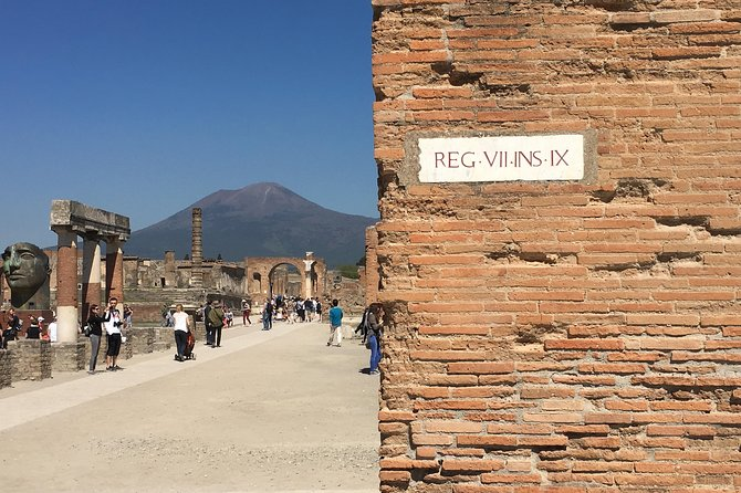 History and Wine - Private car service, guided tour of Pompeii and Wine tasting