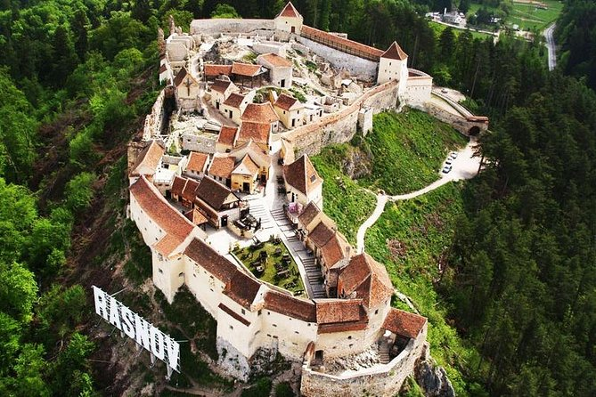 Tour to Dracula's Castle and Bear Sanctuary Brasov