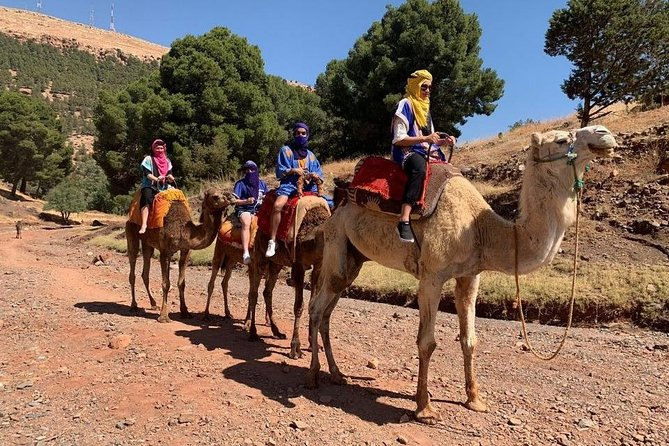 Atlas mountain guided day trip from marrakech & camel ride (lunch at local house