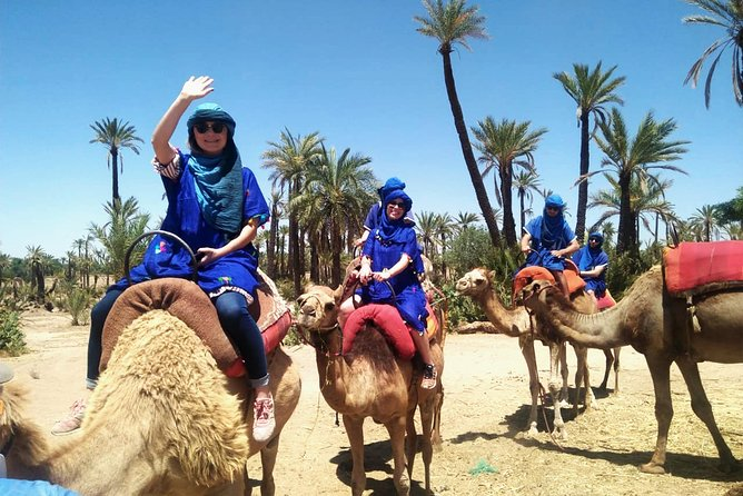 Camel Ride in Marrakech with Hotel-Pick up and Drop-off Included