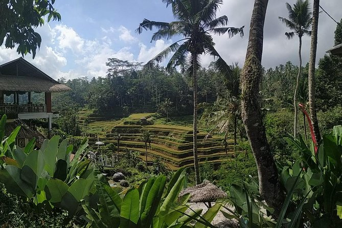 Bali Full-Day Culture tour