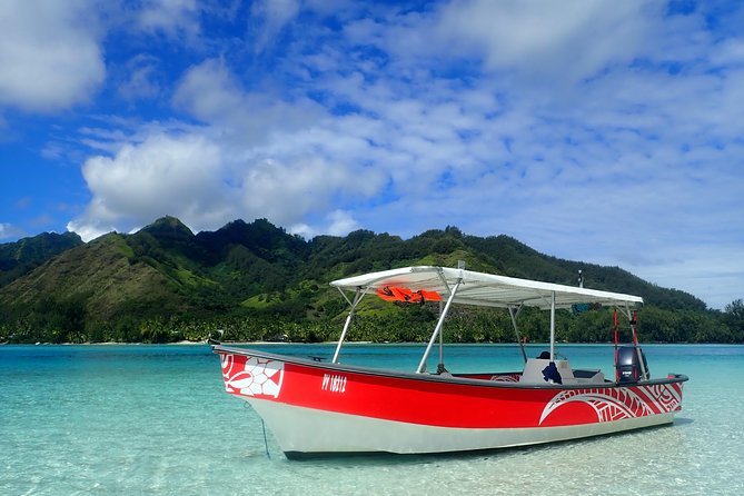 Boat 1/2 day private tour Excursion in the lagoon of Moorea