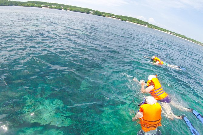 1 DAY Lembongan Island Snorkeling + mangrove exploration + scenic spot `` Tear of the devil '' including sightseeing on the island / marine sports enjoy banana boat / with transfer