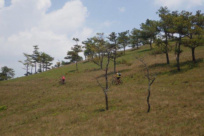 Bike On Dragon's Back In Dalat