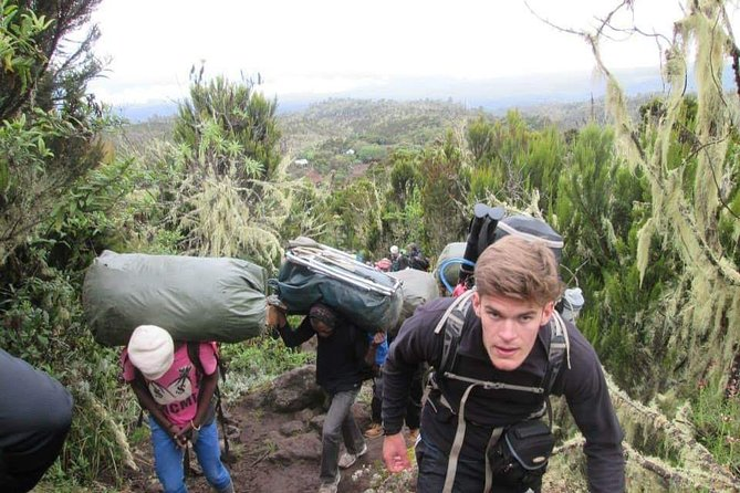 Trek Mountain Kilimanjaro via Shira Route photo 11