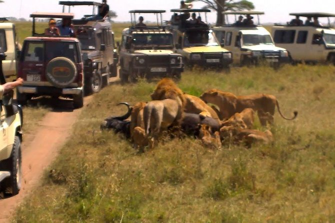 4 Days / 3 Night Safari to Ngorongoro / Serengeti photo 4