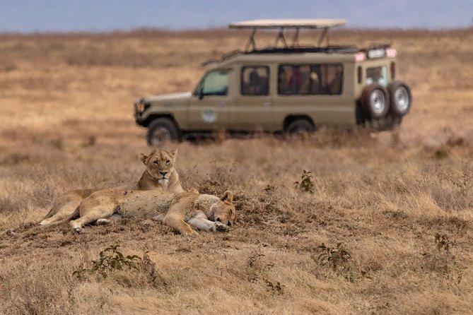 3 Days Safari - Tarangire , Lake Manyara , and Ngorongoro Crater