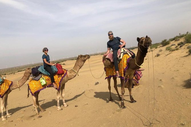 An Non Touristic Half Day Camel Safari photo 11