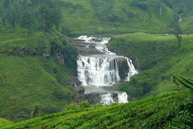 3 Days Tour to Kandy Nuwara Eliya & Sigiriya from Colombo photo 3