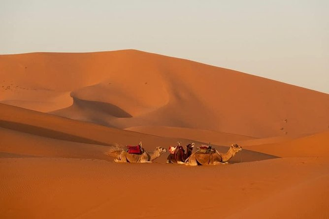 4D/3N Desert Tour From Marrakech