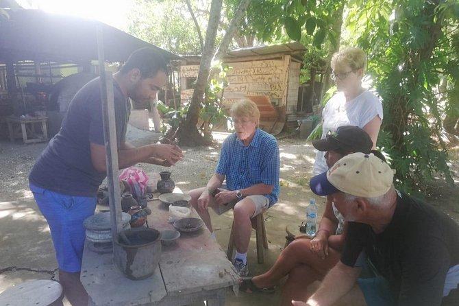 Palo Verde Jungle Boat Tour, Guaitil Pottery & Lunch