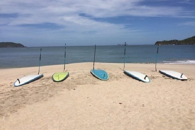 Kayak and Stand Up Paddleboard (SUP) Rental and SUP Lessons/Tour