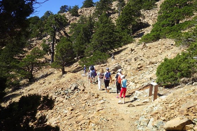 Troodos Walking Trip (Artemis +/Myllomeris Waterfalls) - private from Nicosia photo 8