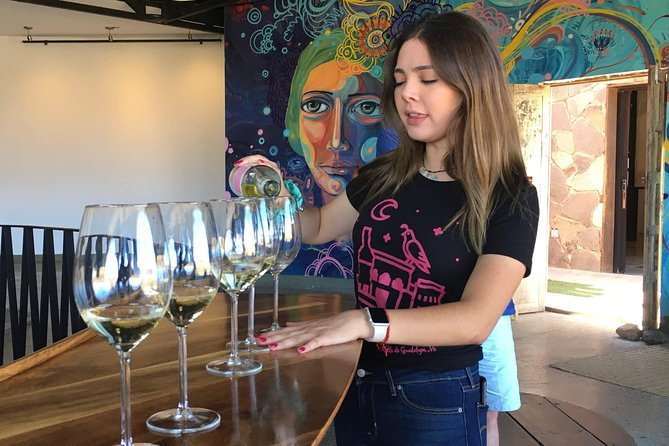 Luxury Private Wine Tasting Tour to Guadalupe Valley from San Diego