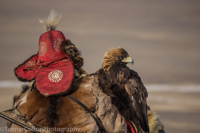 The Wilderness of Western Mongolia and the Kazakh Eagle Hunters (July 2020)