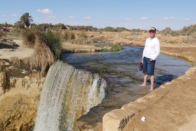 One day tour to el fayoum and wadi el Ryan from cairo