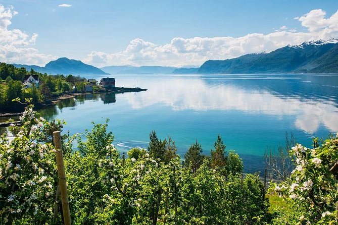 Private guided day tour - Hardanger Fjord Cruise & Vøringsfossen waterfall