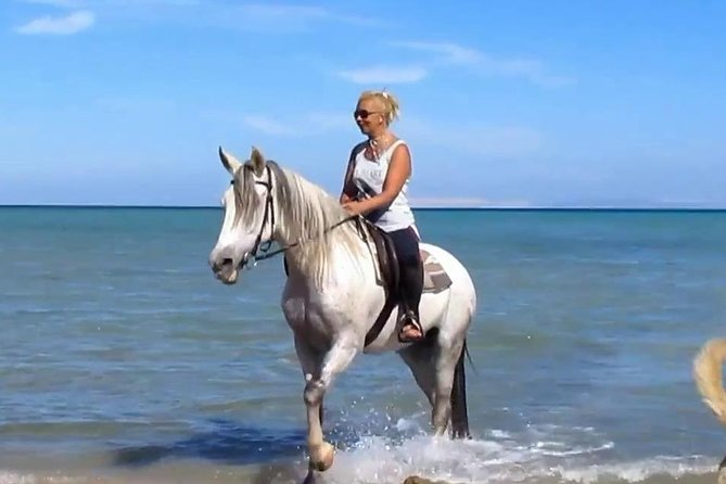 Two hours Horse Riding At Amazing Desert And sea - Hurghada photo 2