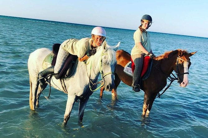 Two hours Horse Riding At Amazing Desert And sea - Hurghada photo 6