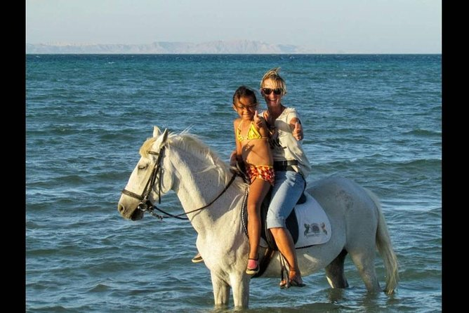 Two hours Horse Riding At Amazing Desert And sea - Hurghada photo 9