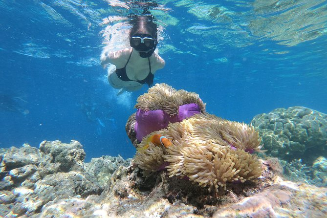 Nusa Penida Island Tour Package With Snorkeling
