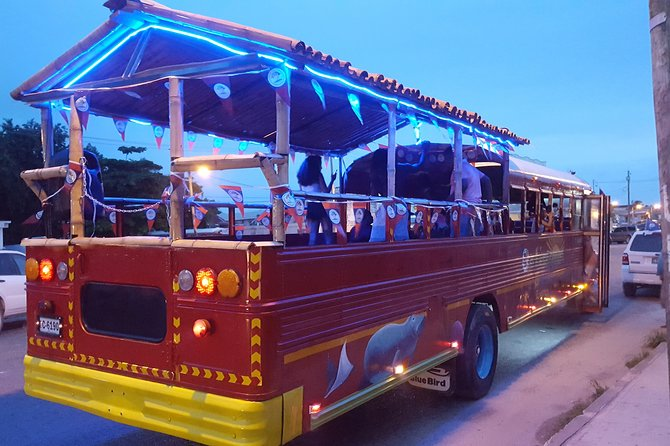 Belize Party Bus ULTIMATE Evening / Night Time Experience! ( FRIDAYS ONLY! ) photo 3