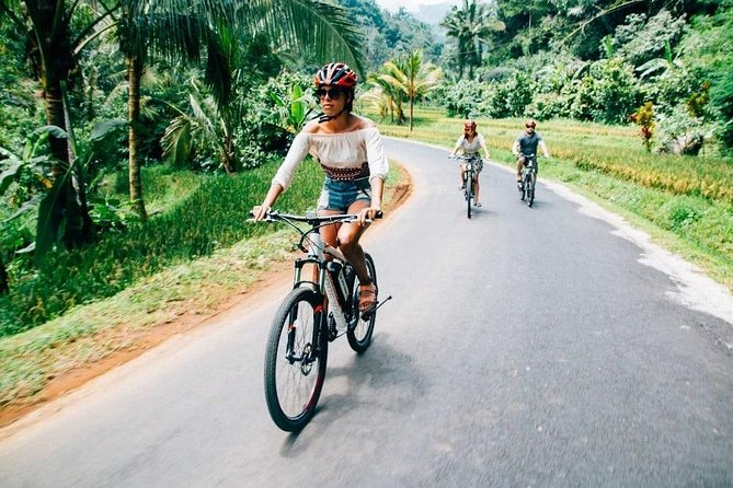 Downhill Cycling in Bali Countryside