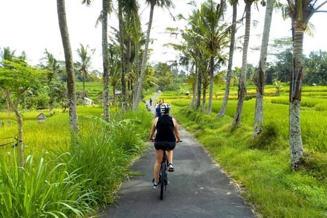 Cycling Tours Hidden Bali Beauty