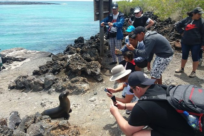 Full Day Isabela Island with Tintoreras Tour From Santa Cruz