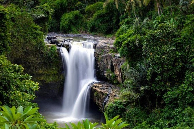 Ubud countryside and waterfall tours