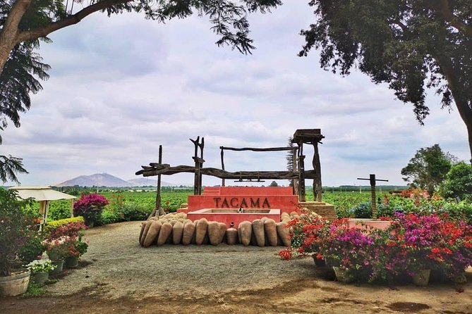 Winery and Pisco Distillery tour