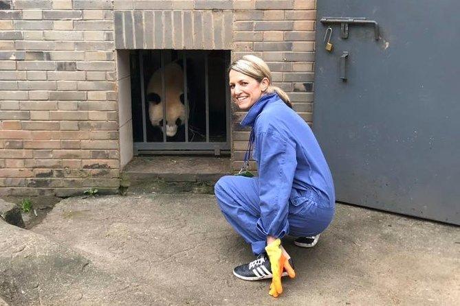 Private Full Day Panda Volunteer and Dujiangyan Irrigation System Tour