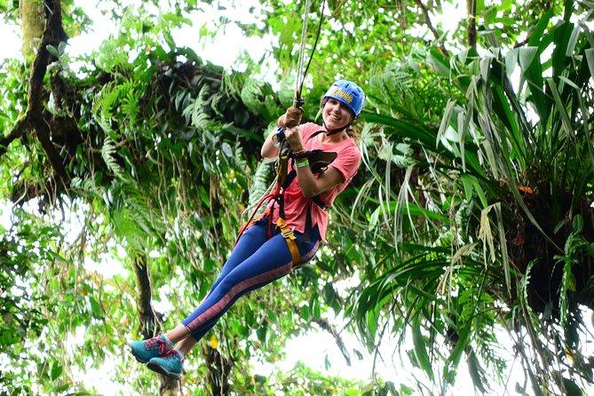 Tarzan Swing Adventure