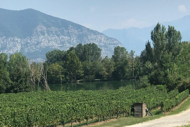 Sparkling Wine Tour from Milan in small groups, a half day tour to Franciacorta