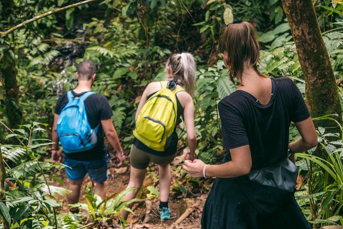 2 days / 1 night Ethical Jungle Trekking