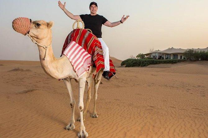 One hour Camel Riding At Amazing Desert - Hurghada