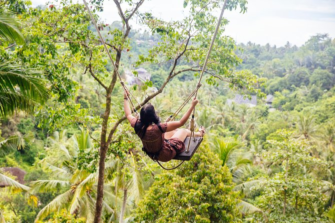 Best of Ubud Tour with Jungle Swing