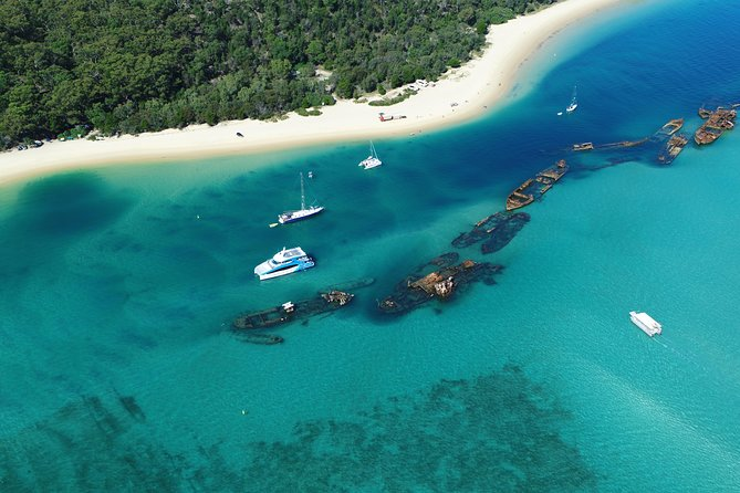 No Extra Cost | Dolphin Watch & Tangalooma Wrecks Cruise with Snorkeling photo 4