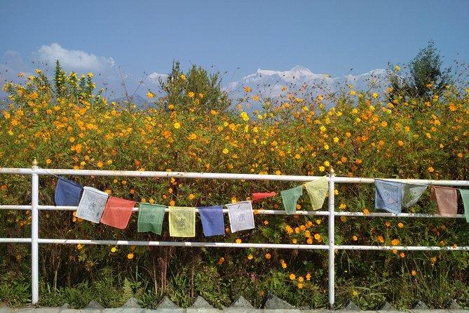 Pokhara Natural Sightseeing
