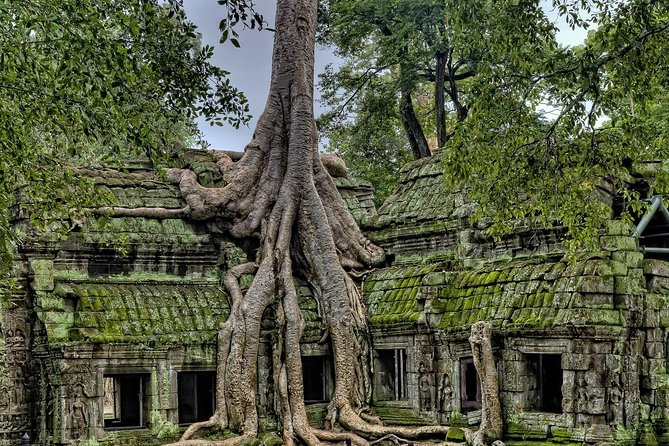 Private Tour: Angkor Wat and The Royal Temples Full-Day Tour from Siem Reap photo 8