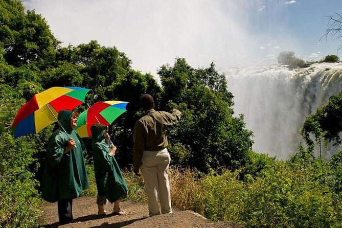 Best of the Victoria Falls Full Day Experience